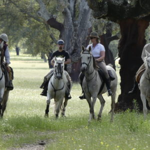 rutas-a-caballo-valle-del-jerte