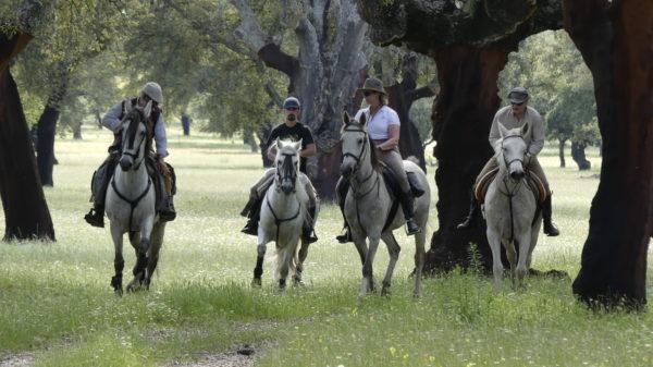 rutas a caballo monfrague
